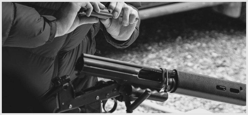 gun-inspection